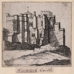 Woodstock Castle